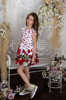 Elegant dress with RED ROSES